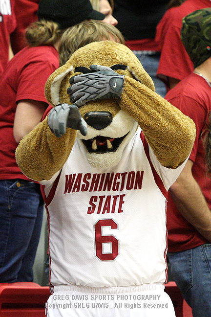 Butch T. Cougar - Washington State Athletics