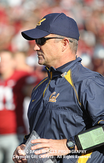 jeff tedford cal bears photographs photos images and